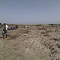 South Kite Sardinya SKS