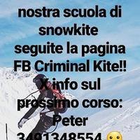 Criminal Kite